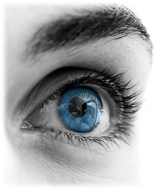 Fokussierter Blick